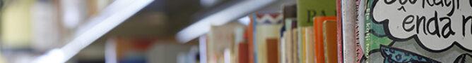 Jahn-Bibliothek für afrikanische Literaturen